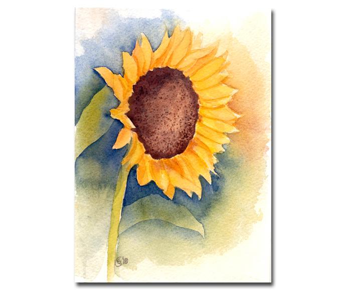 "SUNFLOWER 3 yellow flower watercolor painting Sandrine Curtiss ORIGINAL Art 5x7"""