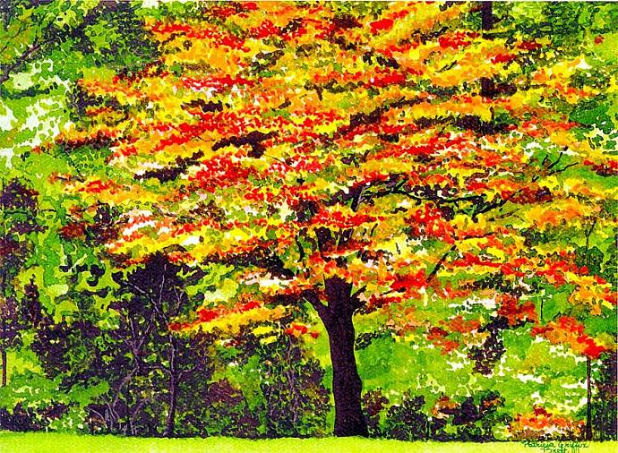 Autumn Splendor- fine art print