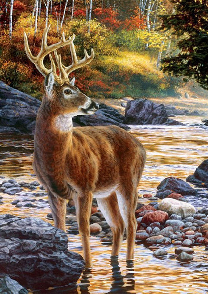 Shallow Deer Crossing Cross Stitch Pattern***LOOK***X***INSTANT DOWNLOAD***
