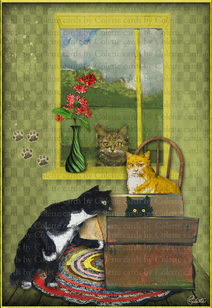 Cat in the Box Digital Collage Greeting Card1183