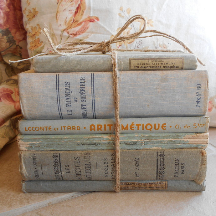 Antique French Light Blue Book Bundle. Shabby Chic Vintage Book Stack of French
