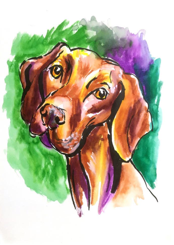 Can't Resist That Face - Dog Drawing (10 minute sketch)