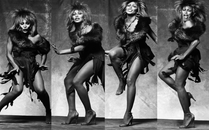 "Tina Turner Polyester Fabric Poster (13""x19"" or 18""x28"")"