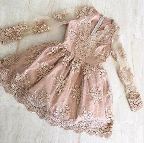 Sexy V-Neck A-Line Lace Homecoming Dresses,Short Prom Dresses,Cheap Homecoming