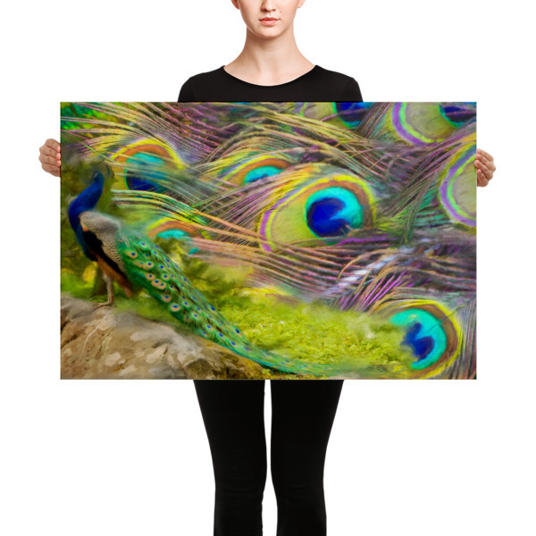 "Canvas""Colours of peacock"""