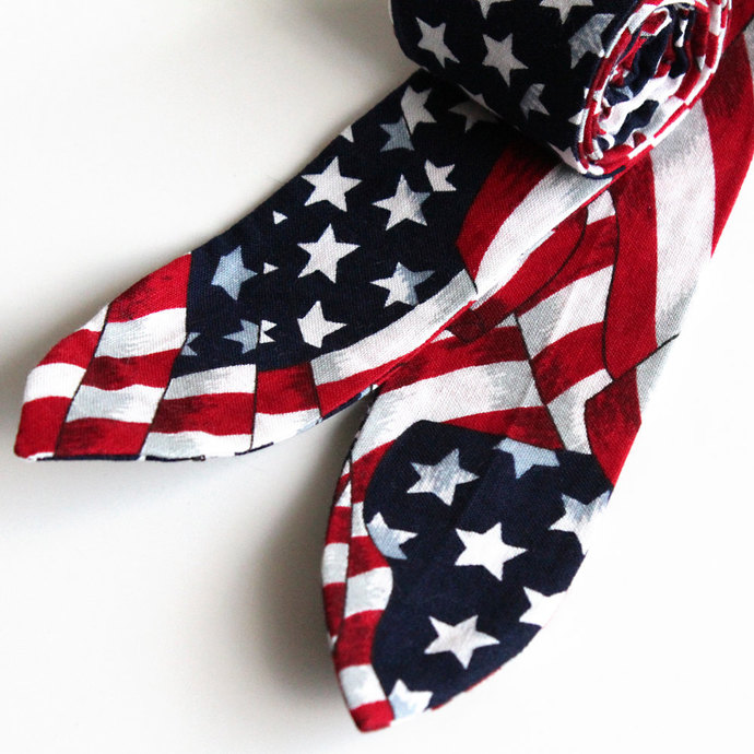 Cool Tie Patriotic USA Flag. Stars and Stripes