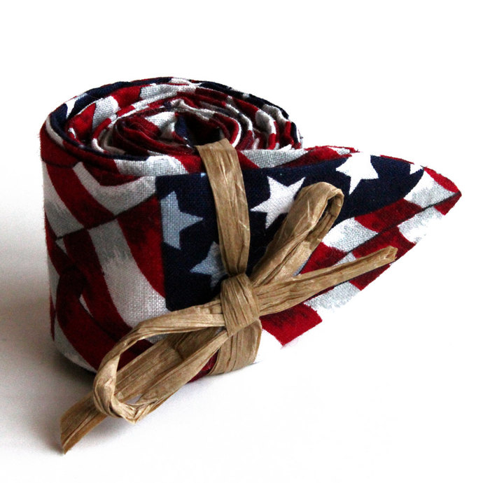 Cool Tie Patriotic USA Flag. Stars and Stripes