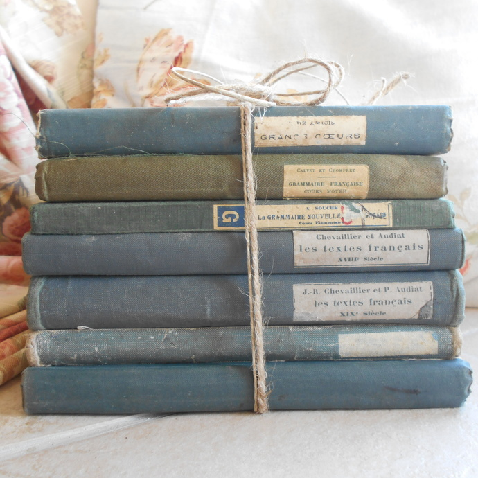 Antique French Book Bundle. Shabby Chic Vintage Book Stack of French School