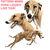 Greyhound Cross Stitch Pattern***LOOK***