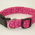 Raspberry Polka Dots Adjustable Dog & Cat Collars & Martingales & Leashes
