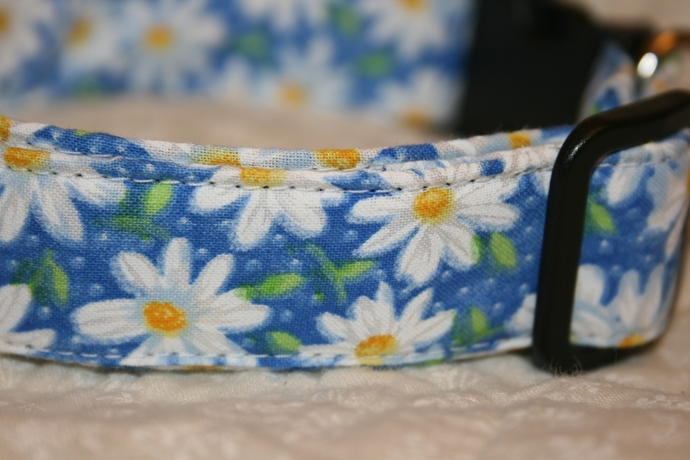 Blue Daisy Adjustable Dog & Cat Collars & Martingales & Leashes