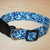 Blue Floral Butterflies Adjustable Dog & Cat Collars & Martingales & Leashes