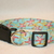 Turquoise Pink Starfish Beach Ocean Adjustable Dog & Cat Collars & Martingales &