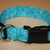 Aqua Blue Swirls Turquoise Adjustable Dog & Cat Collars & Martingales & Leashes