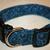 Navy Blue Swirls Adjustable Dog & Cat Collars & Martingales & Leashes