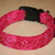 Raspberry Swirls Adjustable Dog & Cat Collars & Martingales & Leashes