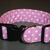 Orchid Purple White Polka Dot Adjustable Dog & Cat Collars & Martingales &