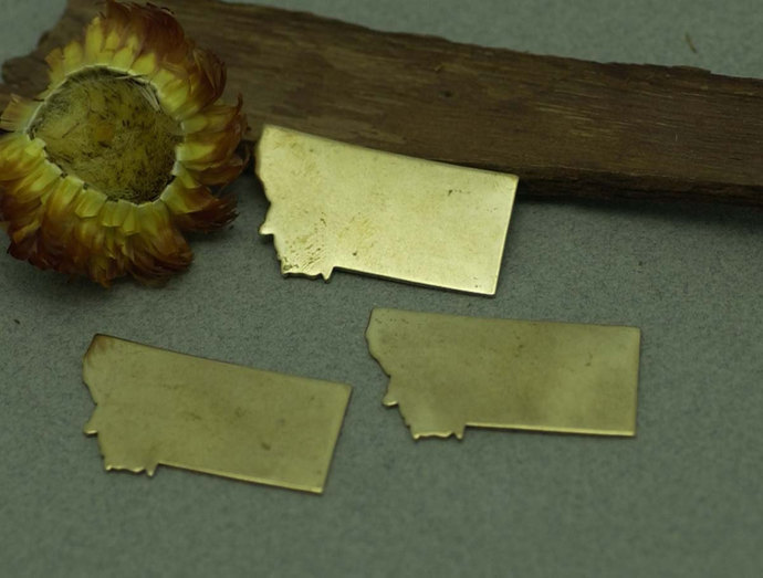 Bronze Montana State Blanks Metalworking Stamping Texturing 100% Bronze Blank -