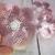 5pcs Applique Flowers