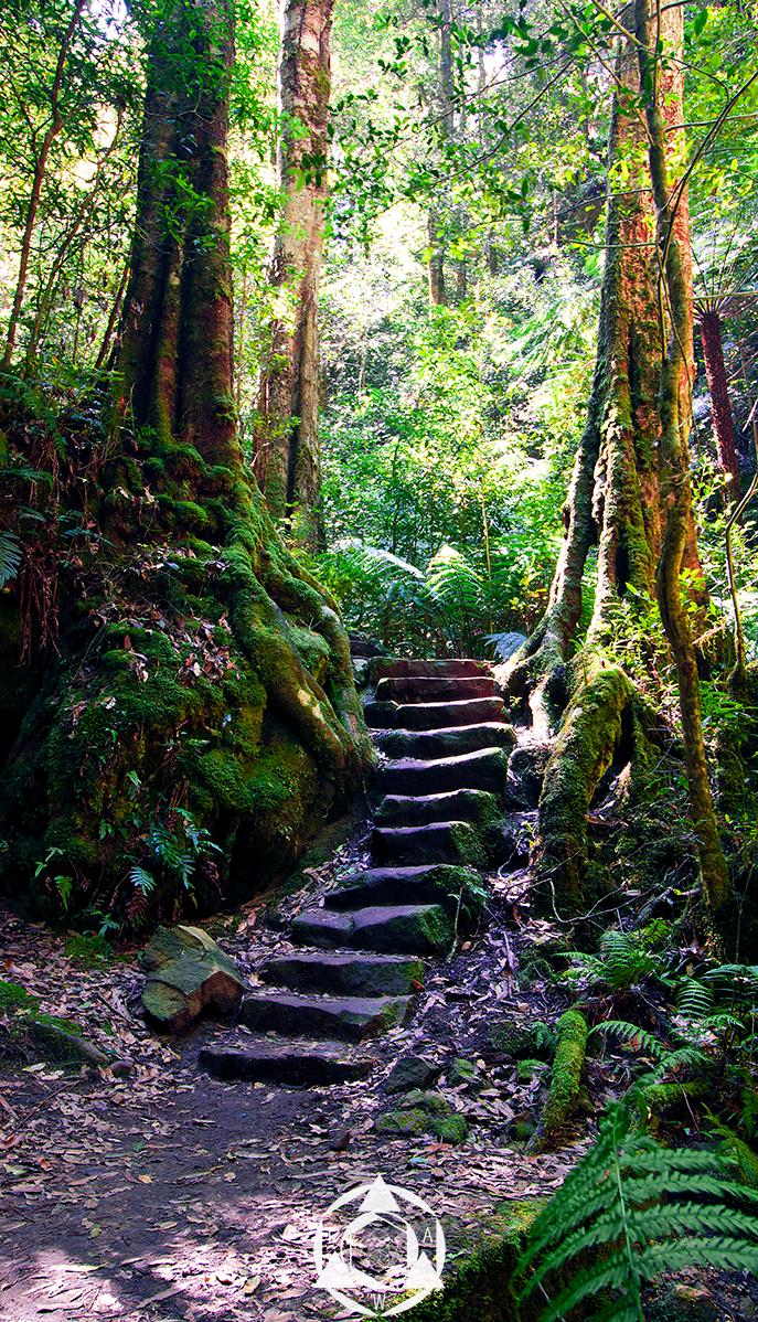 Mystical Pathways