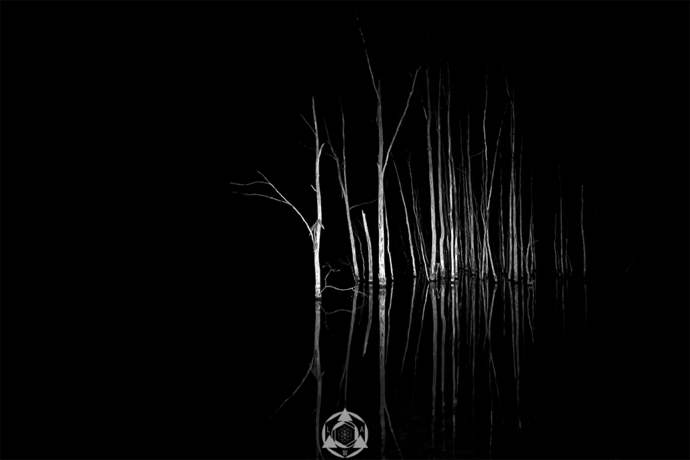 Tombstones - Lake Lyell