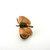 Vintage Winard Butterfly Brooch  Prong Set Green Jade Gemstone Gold Filled Pin
