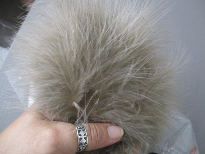 20 x Beautiful Soft Marabu Feathers