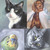 Custom Pet Portraits, Dogs, Cats, Birds, Pigs, Any Type of Pet Portrait, 8x10,