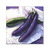 Kitchen art, eggplants painting, Original Oil Painting Japanese Purple and Green