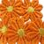 """4pcs Daisy Flower Applique - 1"""" Mix colors stl"""