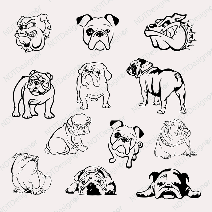 Bulldog Svg/Eps/Png/Jpg/Cliparts,Printable, Silhouette and Cricut File !!!