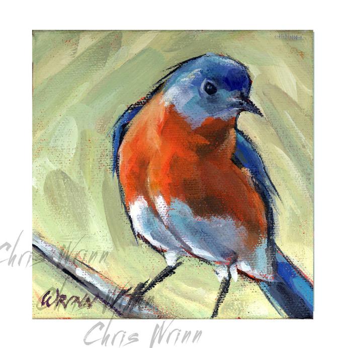 """BlueBird Painting 5x5"""" on Gallery Wrapped Canvas, Bird Art, Bird Watcher"""