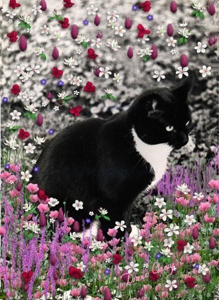 Freckles in Flowers II - Art Card, ACEO
