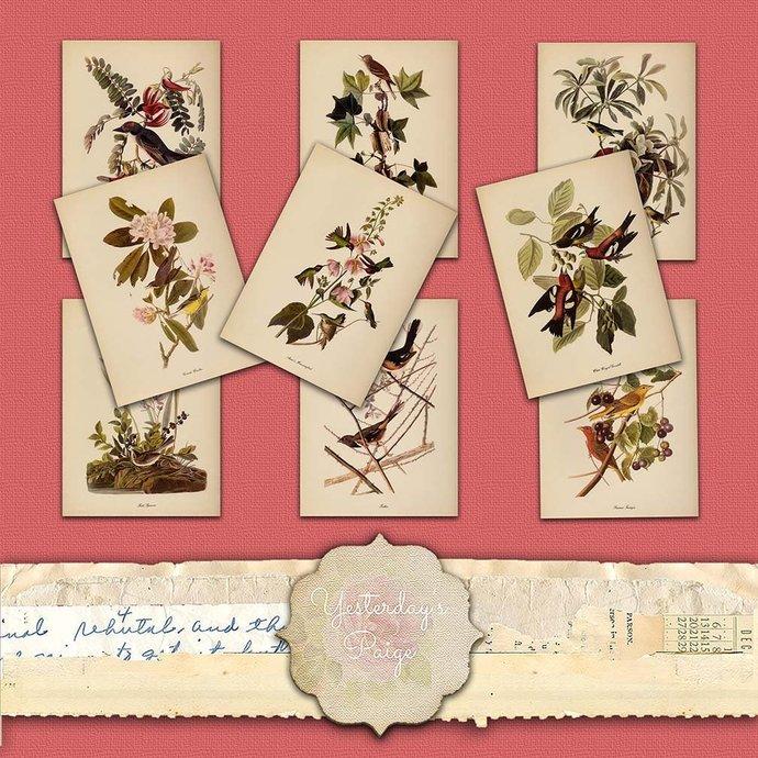 paper hang Tags printable botanical vintage embellishments lot pack scrapbooking