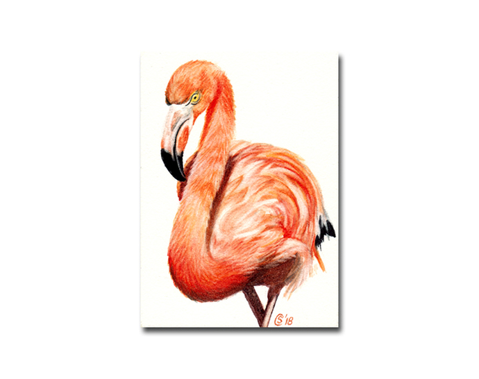 FLAMINGO 3 pink bird flamant rose watercolor painting Sandrine Curtiss ORIGINAL
