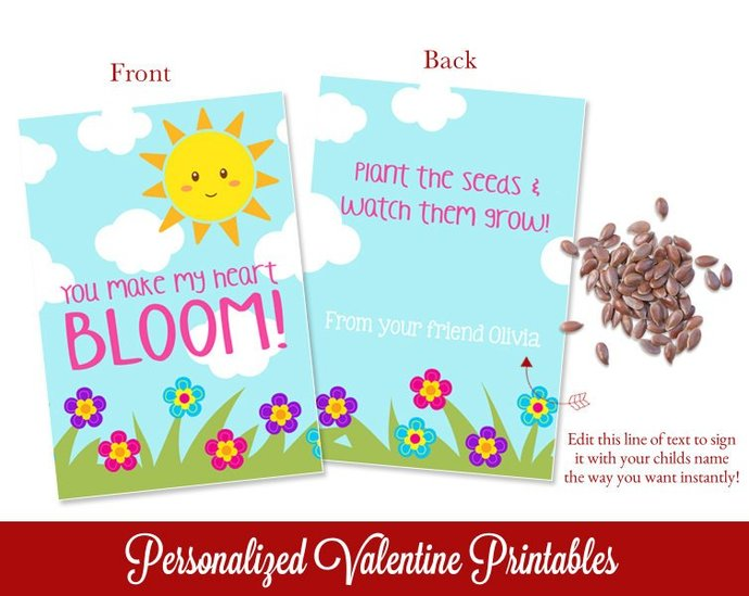 Valentines Day Seed Packets, Kids Valentines, DIY Valentines, Class Valentines,