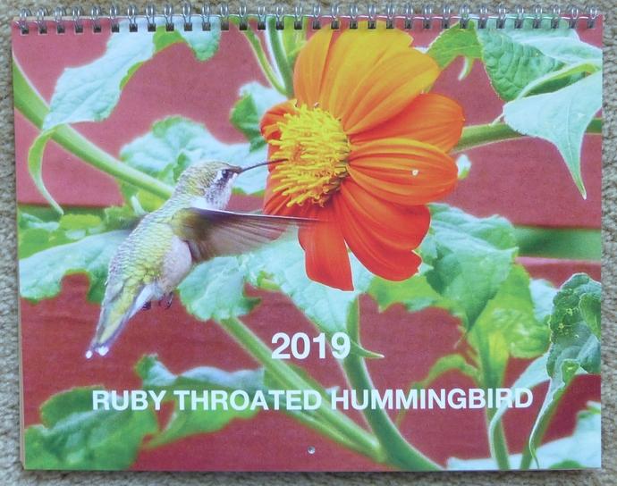 2019 Calendar Wall Calendar Original Photography Hummingbird Calendar Minnesota