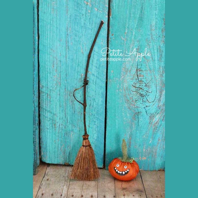 Witch magic broom for Dolls, Blythe, Pullip, Monster High, Barbie and more...#4