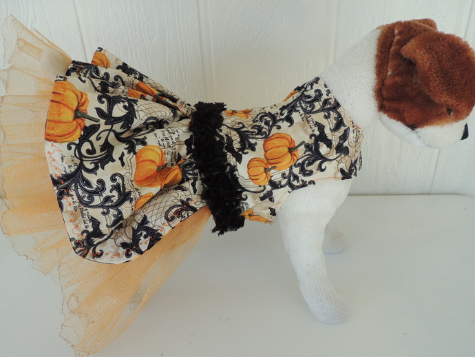 Vintage Pumpkin Halloween Dog Dress