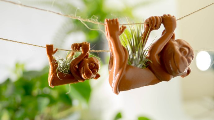 sloth air plants monkey air plant holder hanging planter Gardening bridesmaid