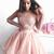 Long Sleeve Blush Pink Homecoming Dresses Illusion Neck Lace Top Hoco Dress