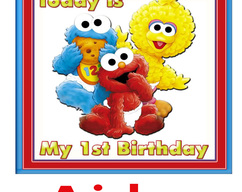 Personalized Iron On Transfer Elmo Birthday Party T Shirt With Name For Family