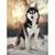 Siberian husky Diamond Painting DIY kit Canvas Painting Wall Art Mosaic Painting