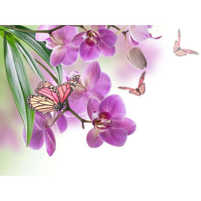 Purple flowers Diamond Painting DIY kit Canvas Painting Wall Art Mosaic Painting