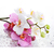 White and pink flowers Diamond Painting DIY kit Canvas Painting Wall Art Mosaic
