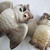 Cheery Owl Salt and Pepper shakers / Bird salt and pepper shakers