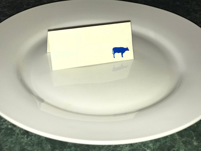 Iridescent Meal Choice Stickers / Decals - Set of 100 - Place Card Food Options