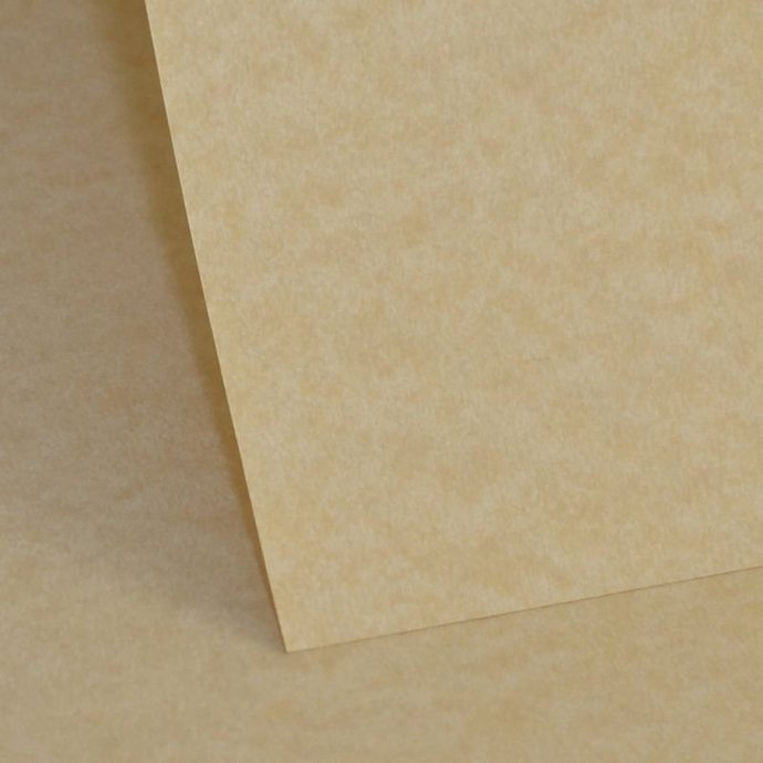 Parchment Color Heart Shaped  Paddle Wedding Program / Personalized/ Favors /