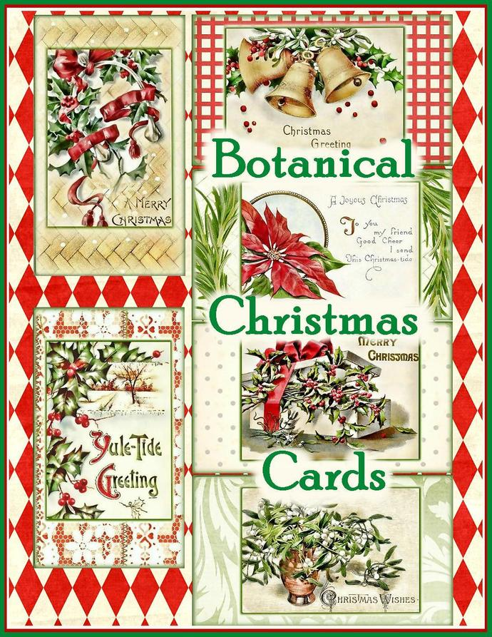 Vintage Botanical Christmas Card by Seneca Pond Crafts on Zibbet