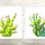 Set of 2 Cactus Prints, Cactus Gift, Cactus Decor, Cacti Print, Green Decor,